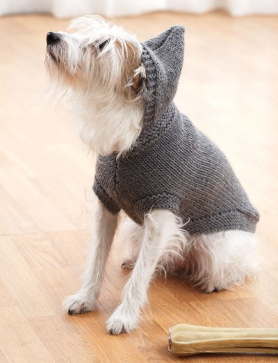 Knitting Pattern Dog Jacket : Hoodie Dog Coat - Patterns Yarnspirations