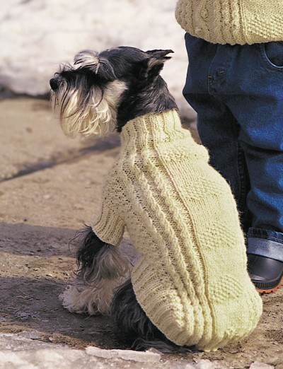 Dogs Knitted Coats Free Patterns : Patons Cables and Hearts Dog Coat (Pattern) Yarnspirations