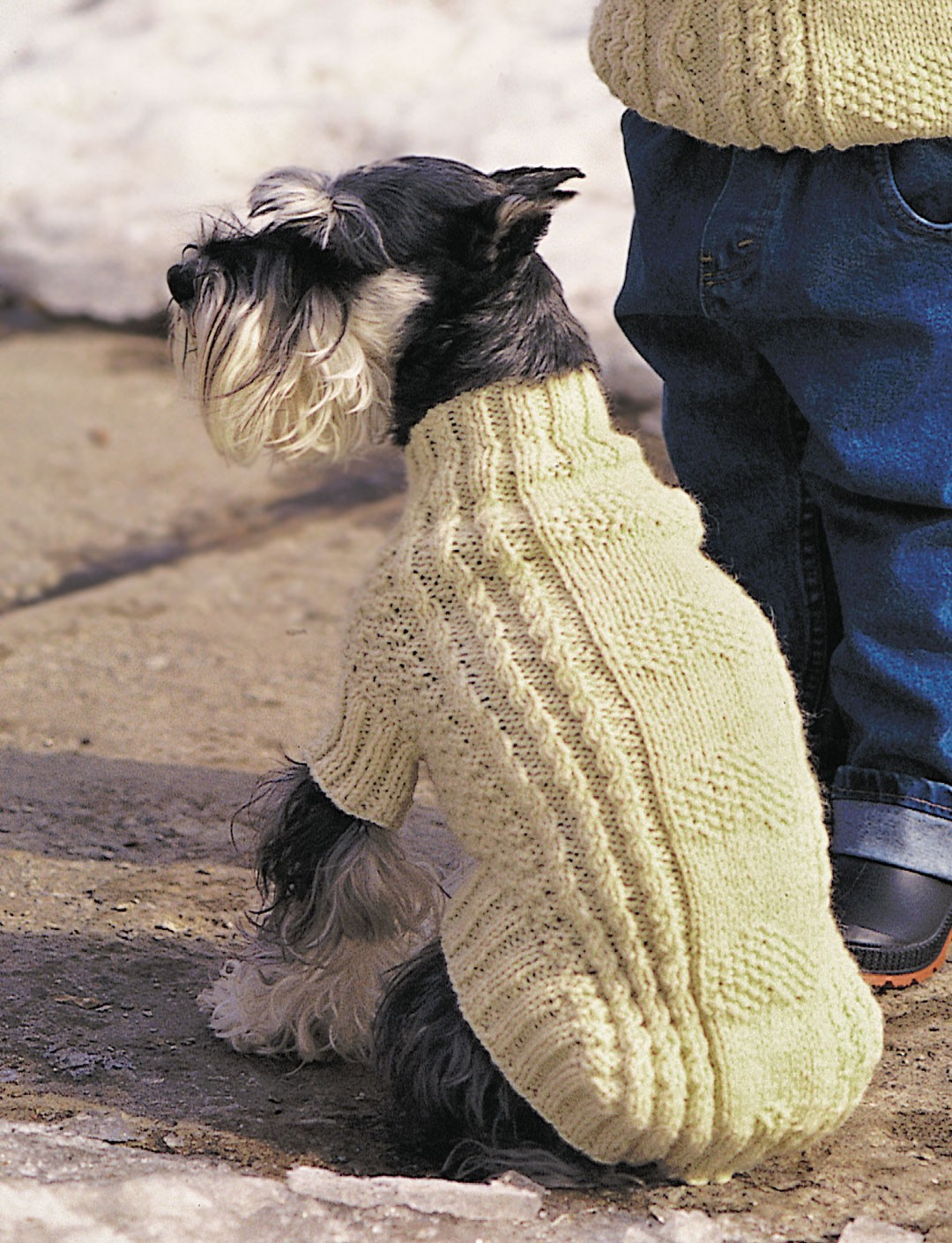 Free Knitting Patterns For Dog Coats : Patons Cables and Hearts Dog Coat (Pattern) Yarnspirations