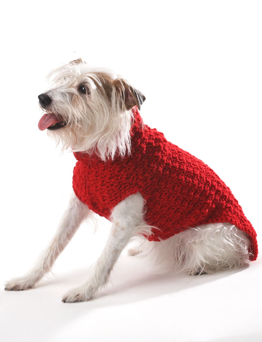 Bernat crochet dog coat crochet pattern yarnspirations crochet dog coat bankloansurffo Gallery