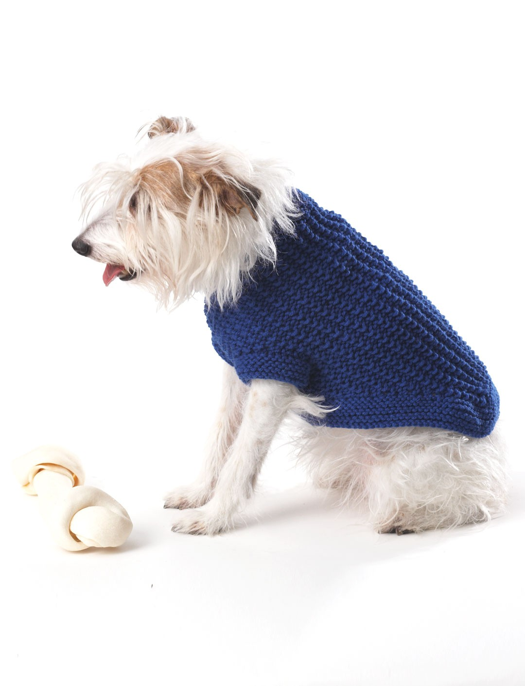 Free Dog Knitting Patterns : Bernat Knit Dog Coat, Knit Pattern Yarnspirations
