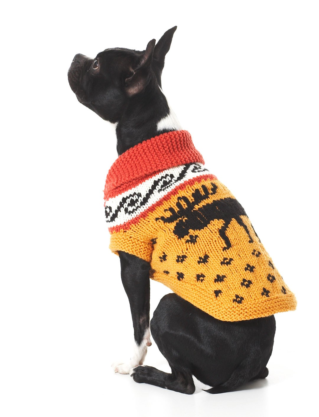 Dogs Knitted Coats Free Patterns : Bernat Cowichan Style Dog Coat, Knit Pattern Yarnspirations
