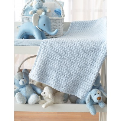 Bundle in Blue Blanket