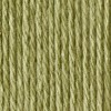 Contrast B - Lily Sugar 'n Cream - Sage Green